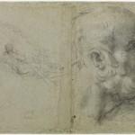 Голова и эскиз человек гребле старика. Carrache Annibale (1560-1609)